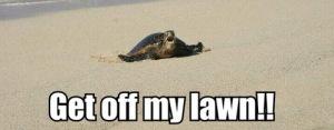 get-off-my-lawn
